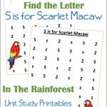 Find the Letter S is for Scarlet Macaw