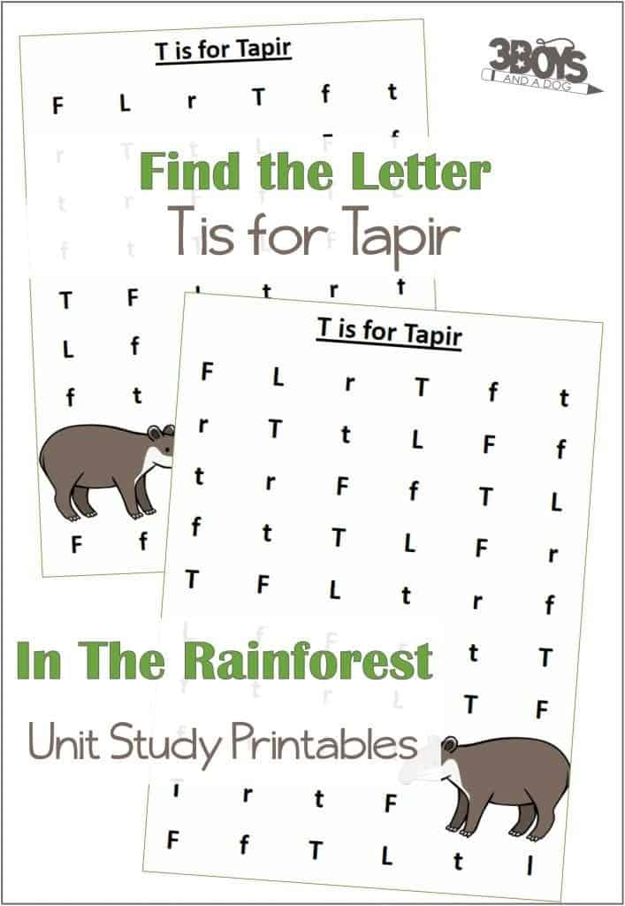 Find the Letter T is for Tapir