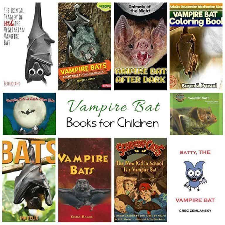 Vampire Bat Books for Children