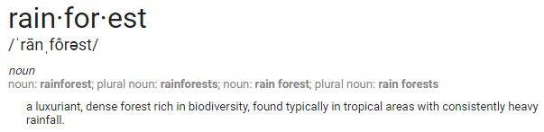 rainforest definition