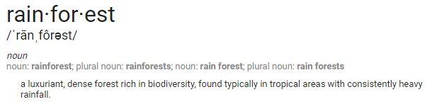 rainforest definition