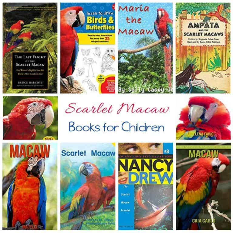 Scarlet Macaw Books for Children