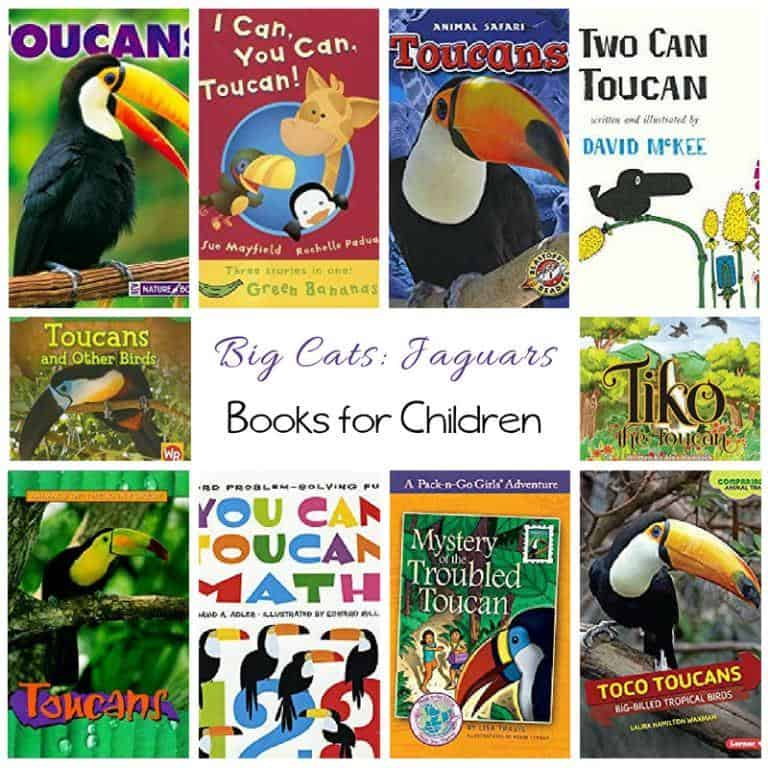 Toucan Books for Children