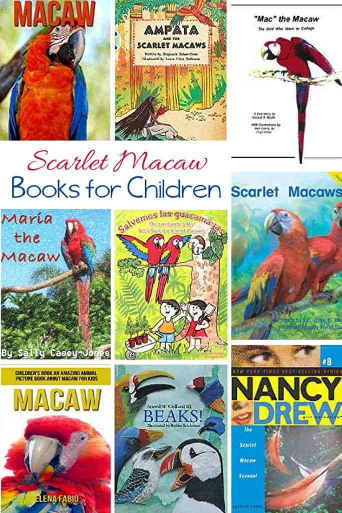 Kids Books about the Scarlet Macaw