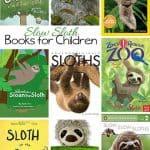 Sloth Books for Kids | Rainforest Unit Study