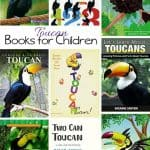 Kids Books about the Toucan