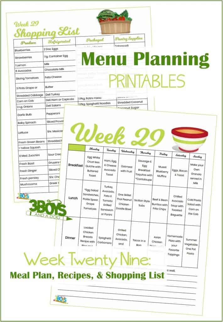 Week Twenty Nine Menu Plan Recipes and Shopping List