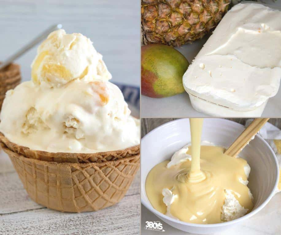Tropical Ice Cream DIY