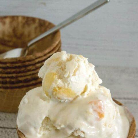 Tropical No Churn Ice Cream Recipe