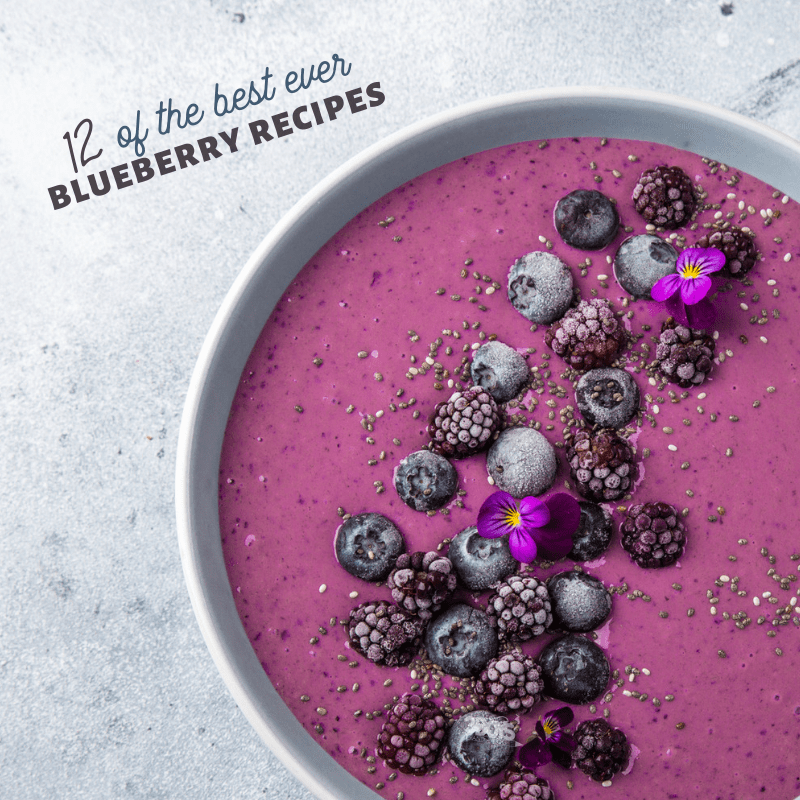 recipes using fresh blueberries