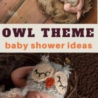 Owl Themed Baby Shower