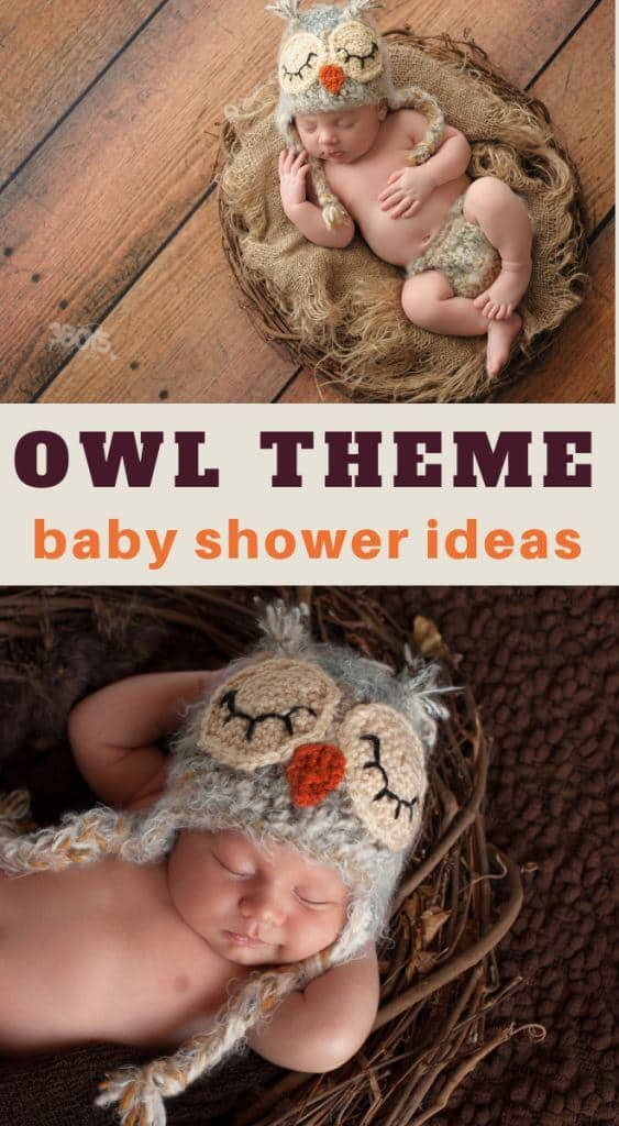 adorable owl themed baby shower