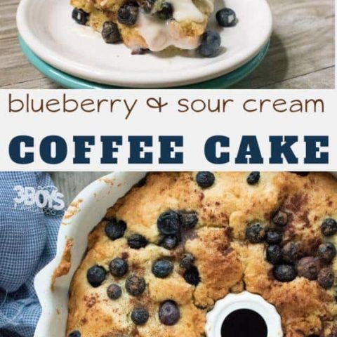 blueberry coffee cake with Streusel filling