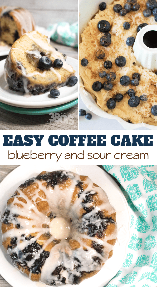 how to make yummy a blueberry coffee cake - the secret is in the sour cream! #dessertrecipe #coffeecake #recipeoftheday
