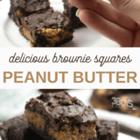Peanut Butter Brownie Squares