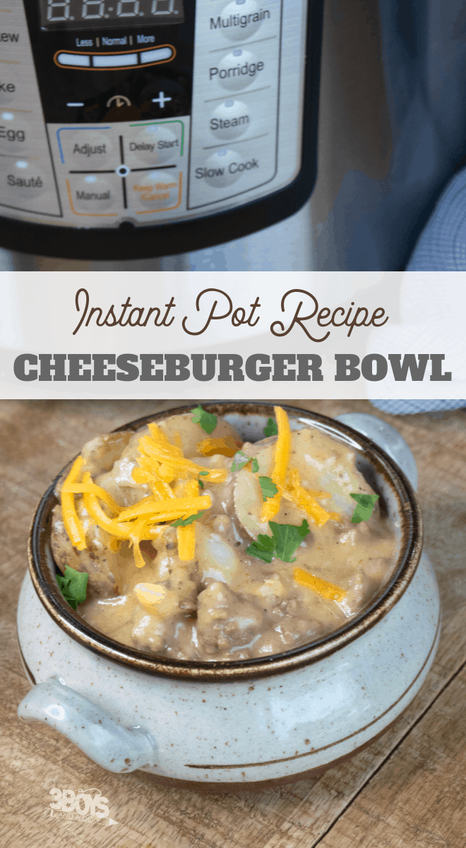 instant pot cheeseburger stew with beef and potatoes