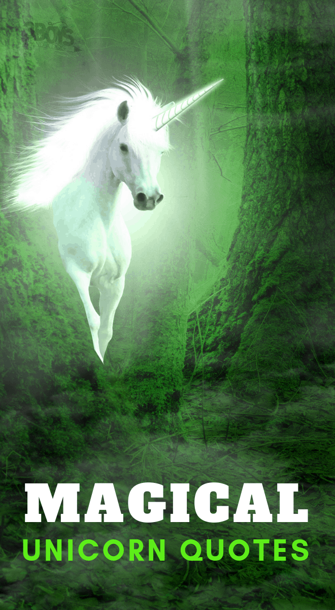 Dreams are the playgrounds of Unicorns and other magical unicorn quotes