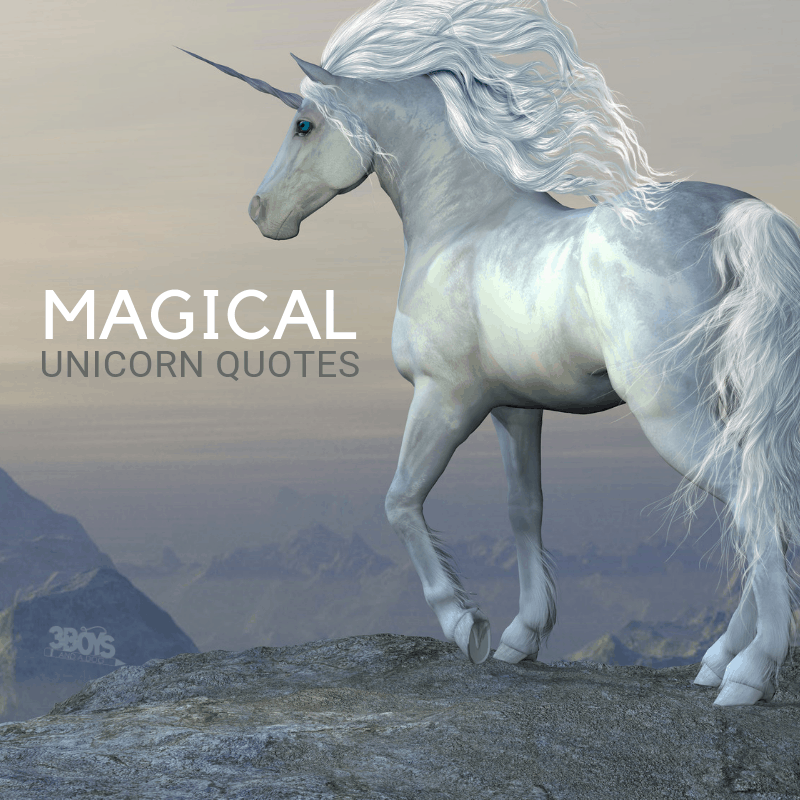Magical Unicorn Quotes