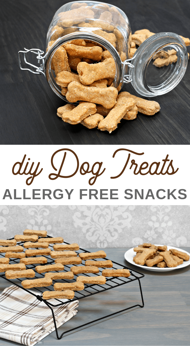 non allergenic homemade snacks or treats for dogs