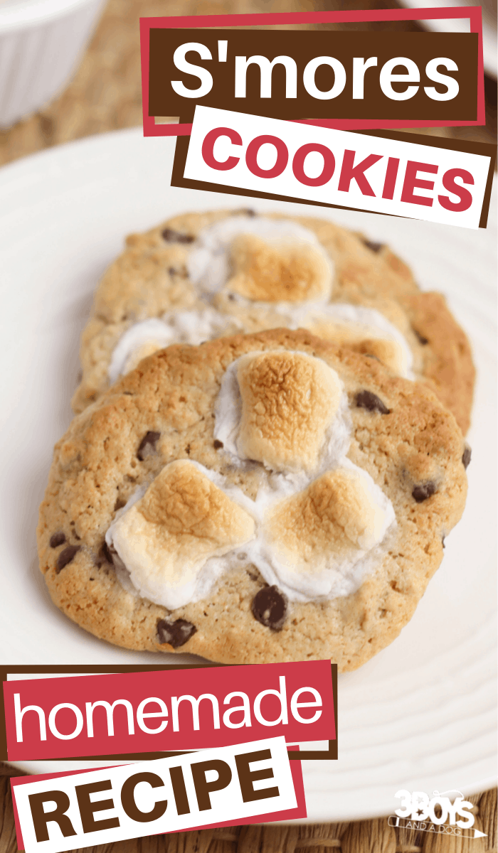smores cookies made from scratch