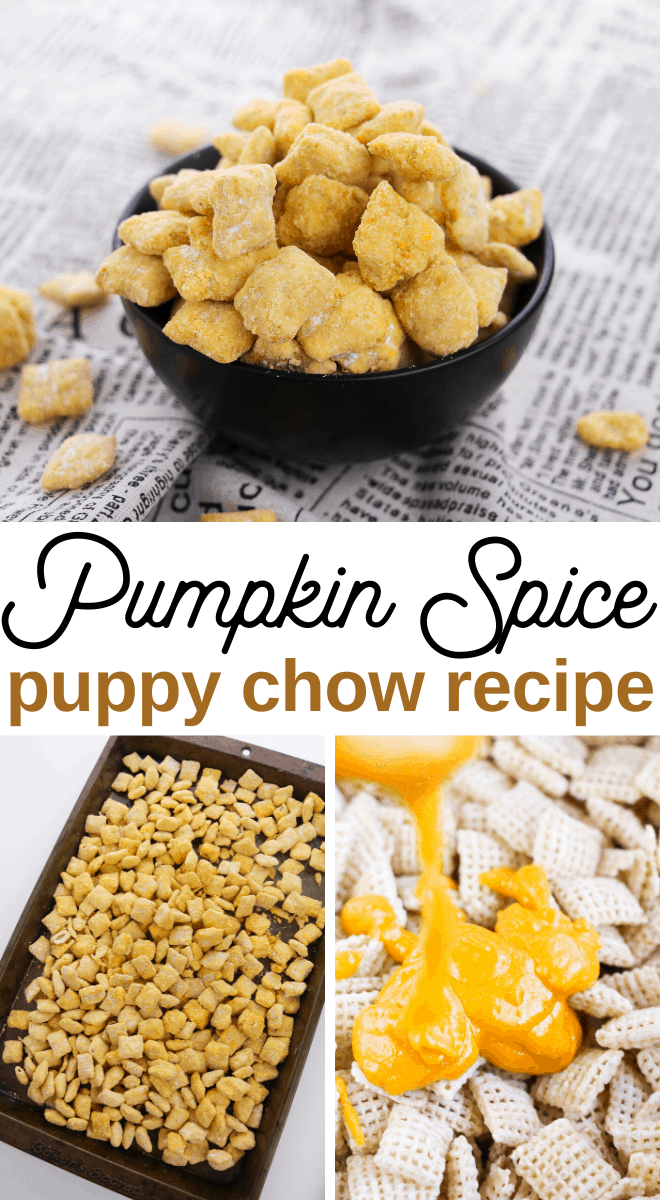 pumpkin spice puppy chow or muddy buddies snack recipe