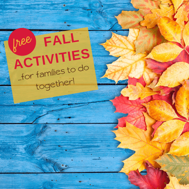 free fall activities for families and kids