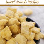 best pumpkin spice fall puppy chow recipe