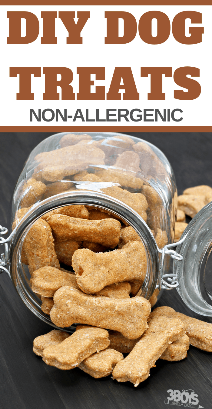 Diy Dog Treats From Leftovers