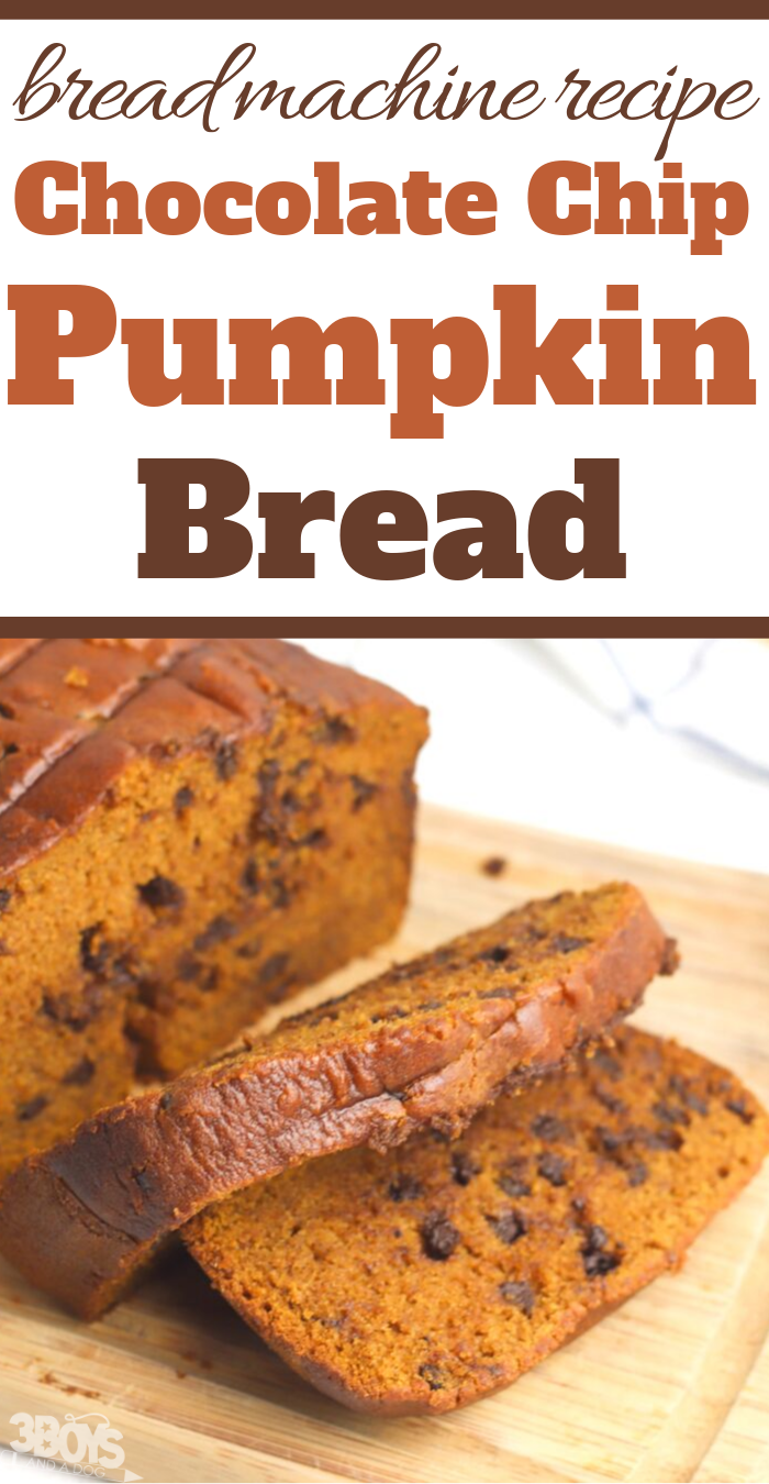 bread machine pumpkin bread with chocolate chips