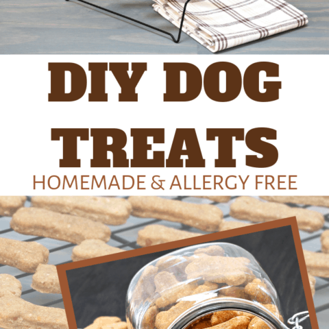 allergy free snacks for doggies