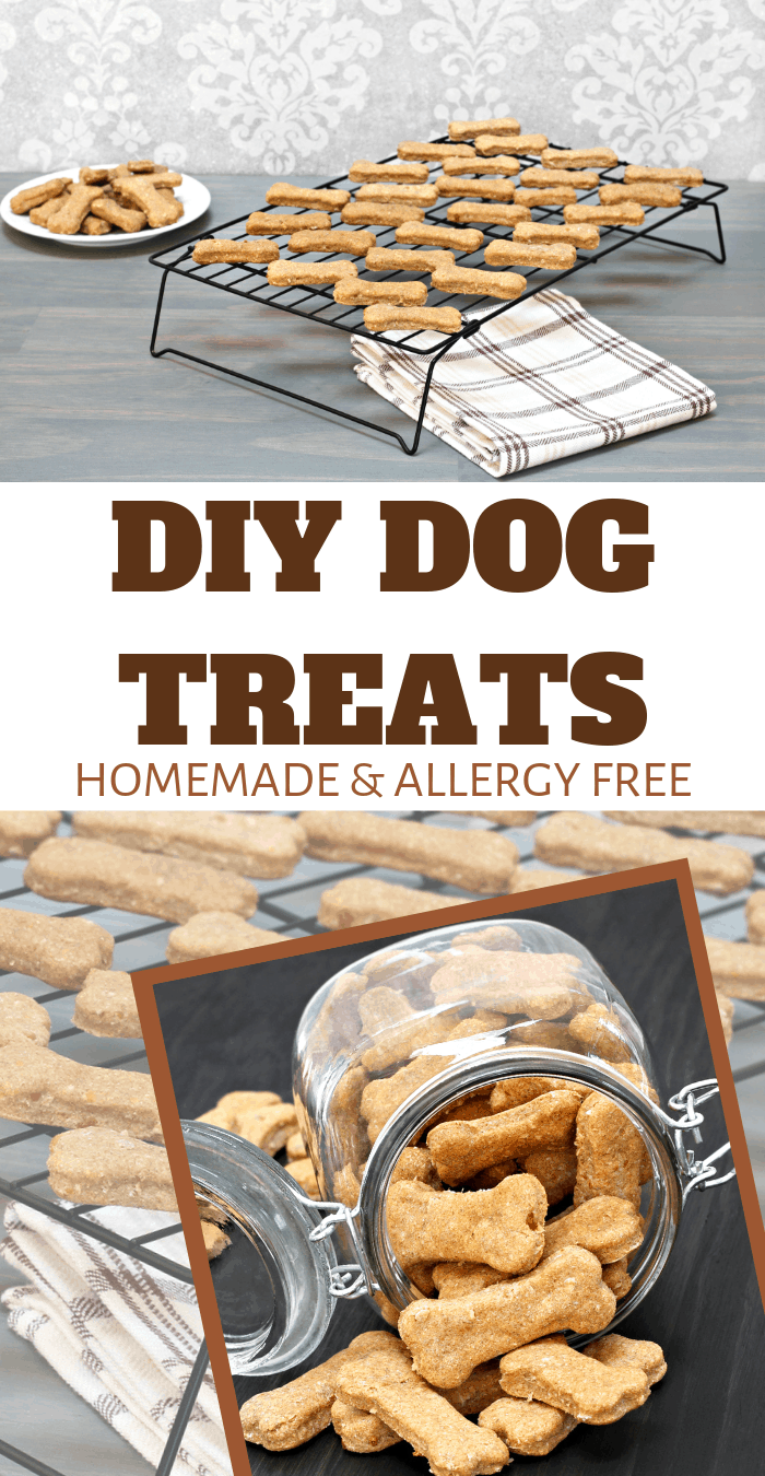 allergy free snacks for doggies