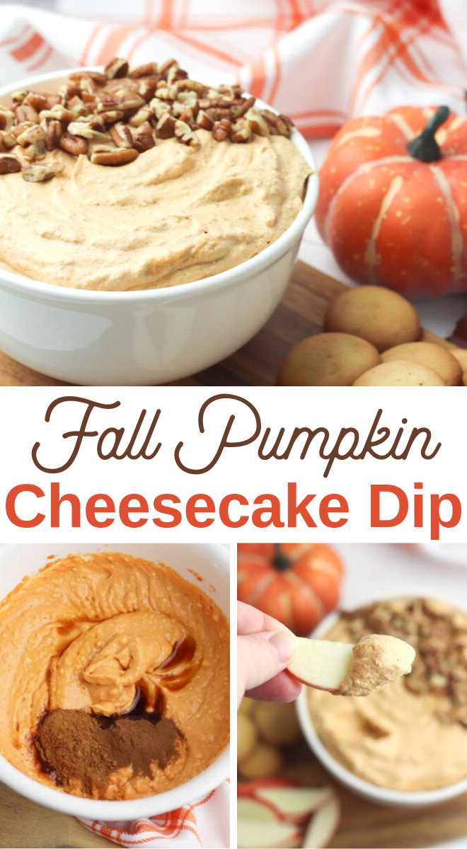 autumn appetizer pumpkin cheesecake dip recipe