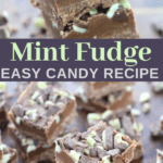 easy mint and chocolate fudge candy recipe