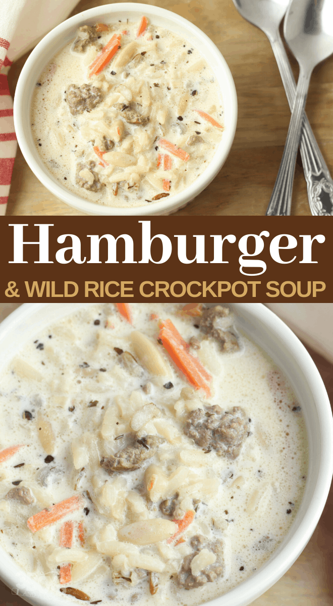 how to make hamburger soup with wild rice in a slow cooker