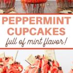 chocolate peppermint cupcakes recipe