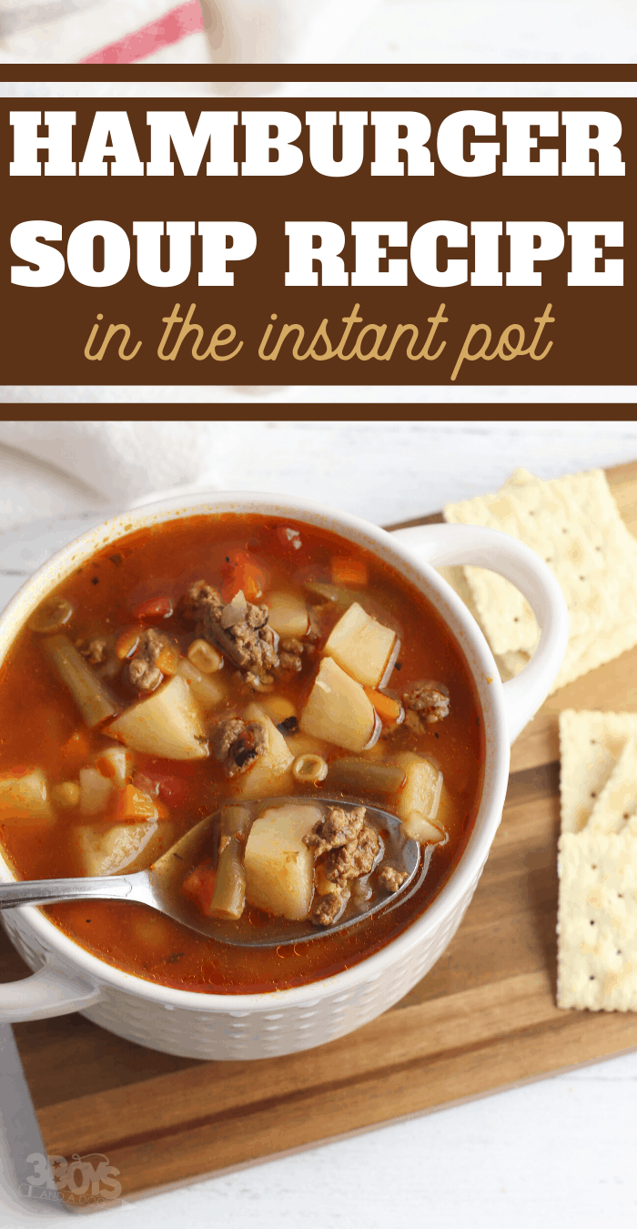 ground beef soup in the electric pressure cooker