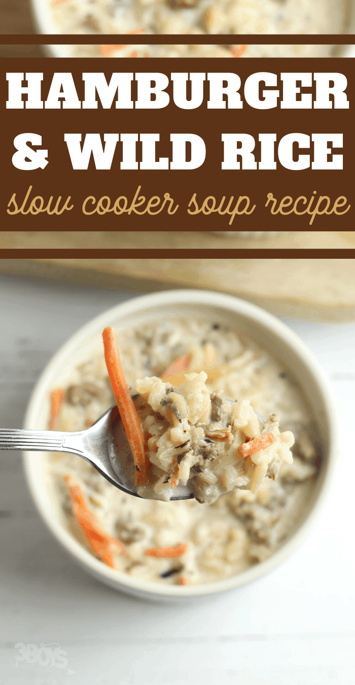slow cooker hamburger and wild rice soup recipe