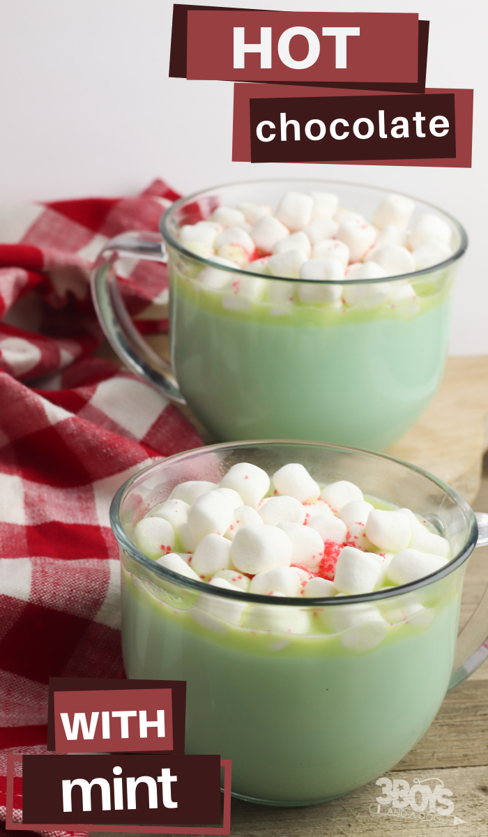 make your own mint hot chocolate like starbucks