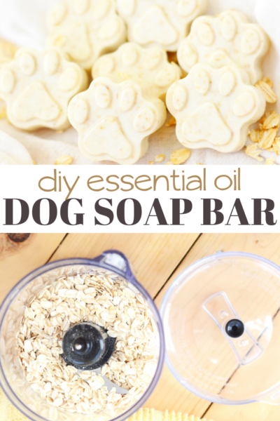oatmeal dog soap melt and pour soap recipe