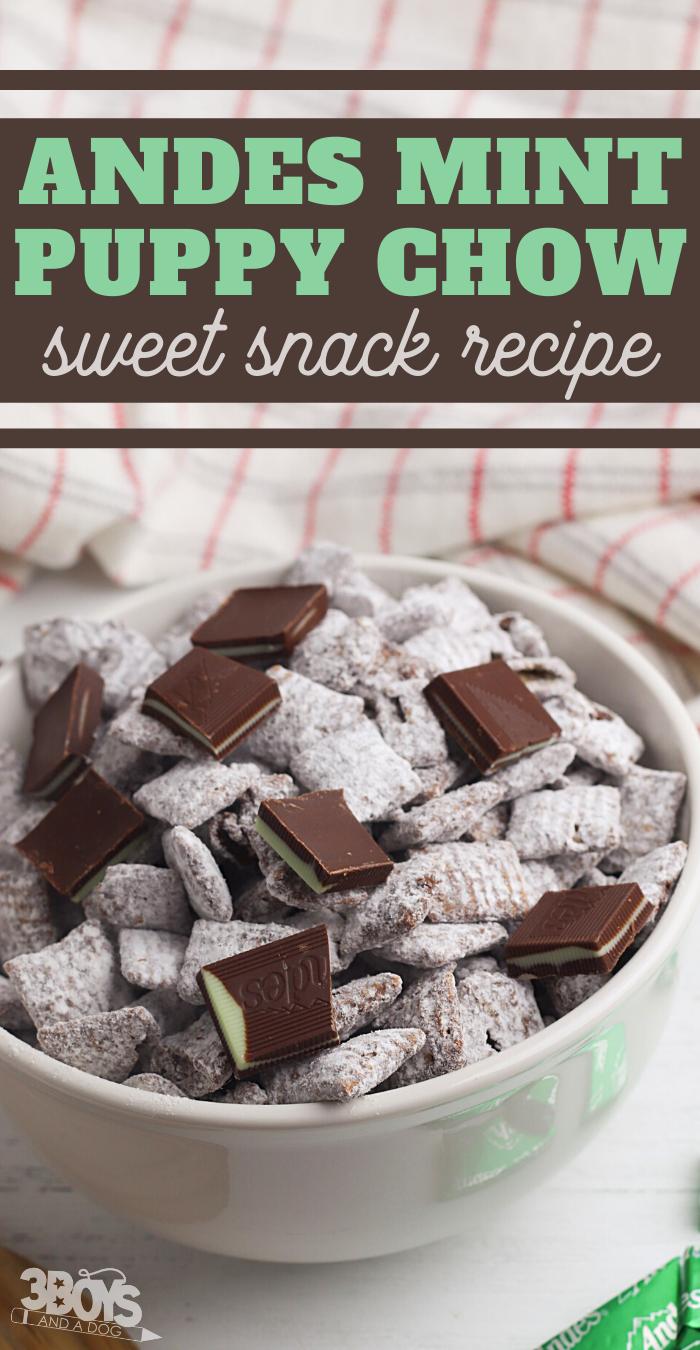 mint chocolate snack recipe