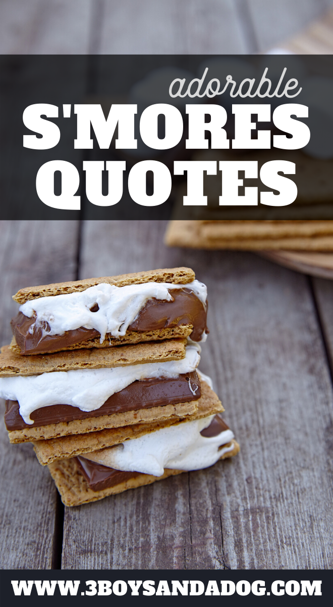 cute smores quotes for tshirts notebooks and more