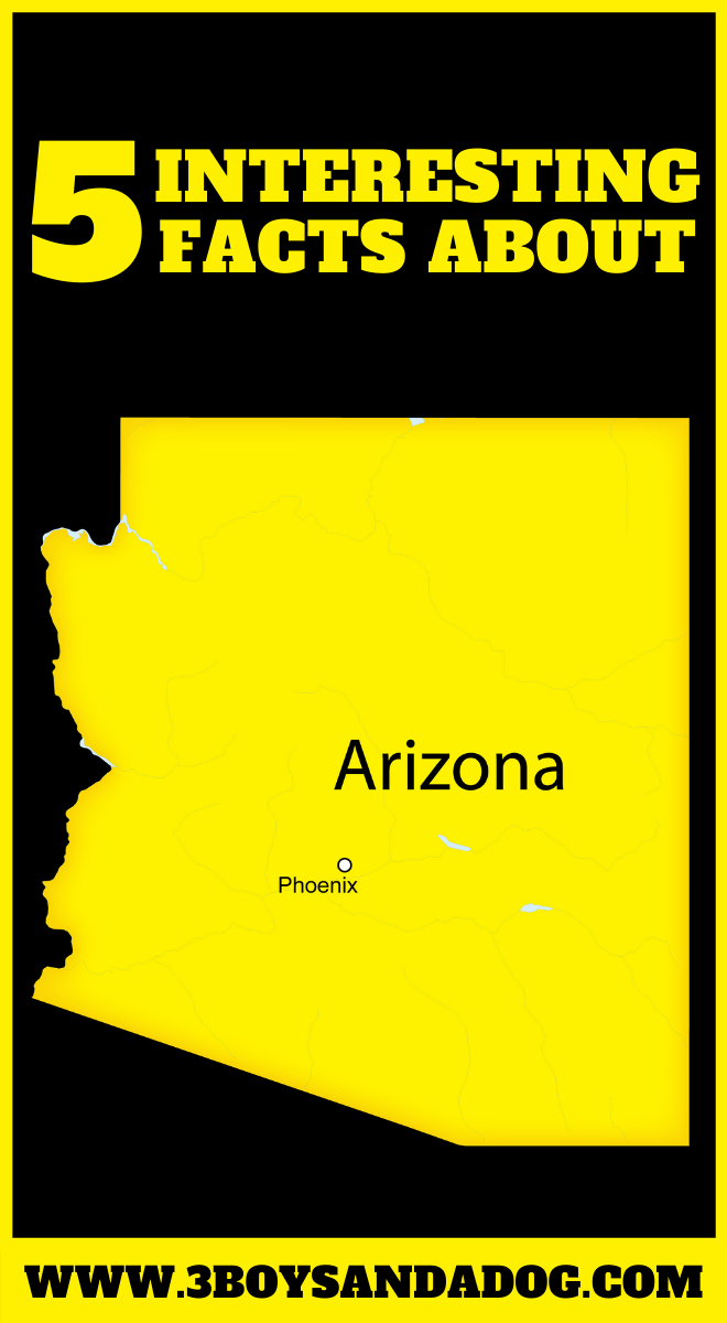 state unit study about Arizona