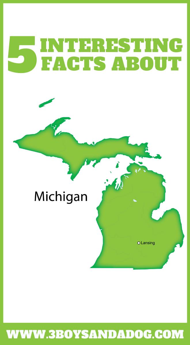 state unit study about Michigan