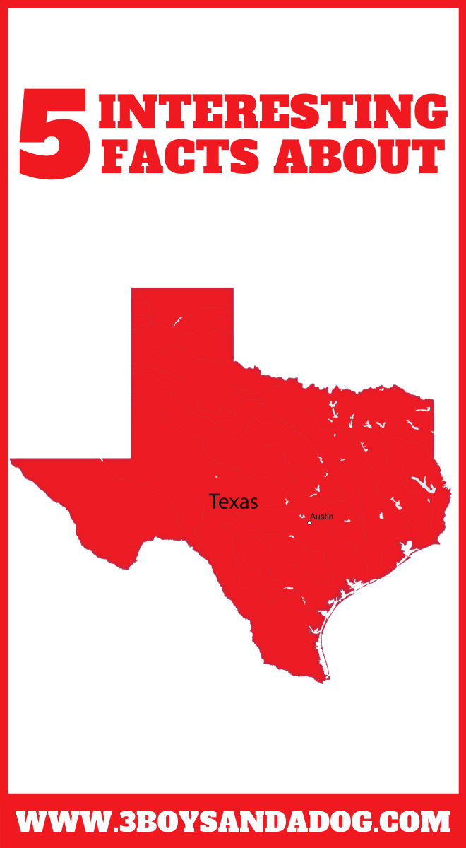 state unit study about Texas