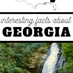 interesting facts about Georgia