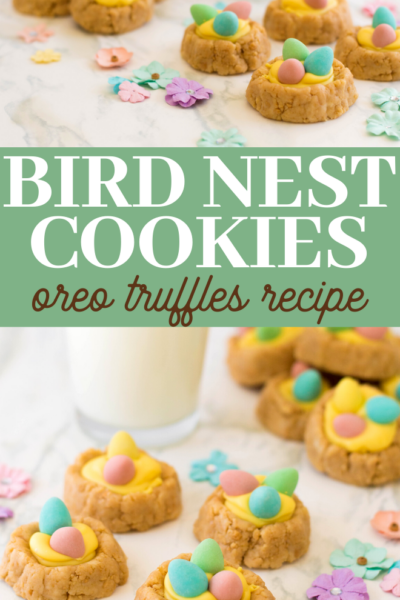 Oreo truffles bird nests with malt eggs
