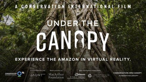 Experience the Amazon Rainforest