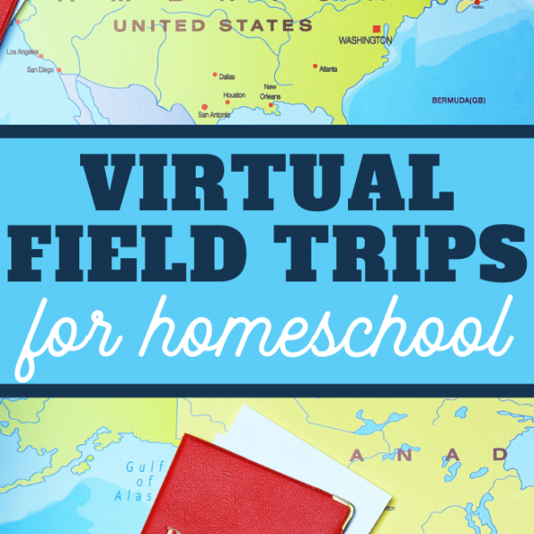 you and the kids can take a virtual field trip