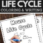 help your young children learn the life cycle of a mouse while practicing pencil grip handwriting and fine motor