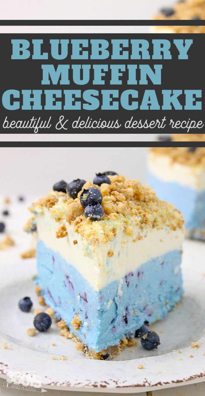 easy blueberry cheesecake recipe